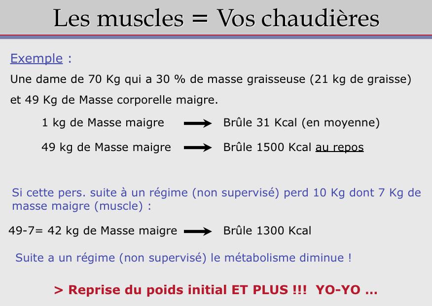 Maigrir perdre du gras van vlodorp nutrition - Regime prise de masse ...